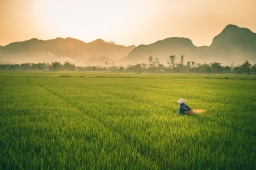 Vietnam 2 week itinerary – The Happy Trail